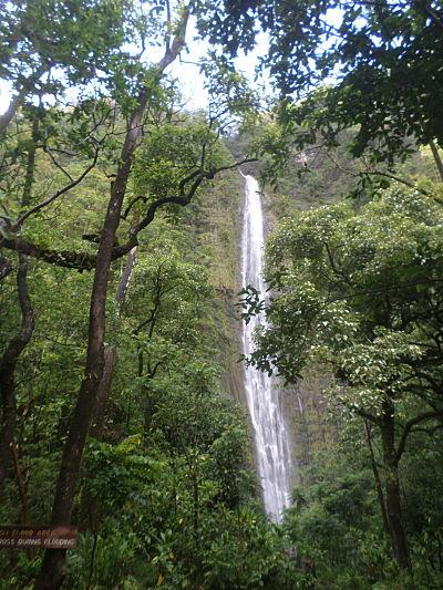 waimoku falls maui hana