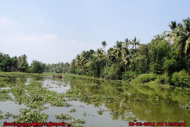 Beautiful Kerala backwater Tours