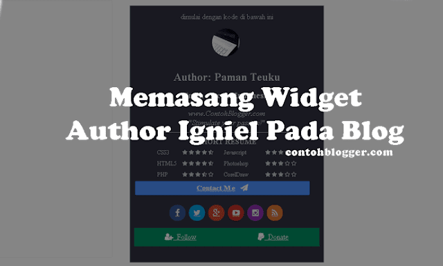 Widget Author Igniel Pada Blog