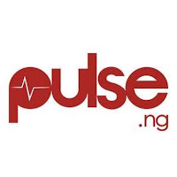 Influencer_Marketing_Who_Deserves_The_Accolades_pulse.ng