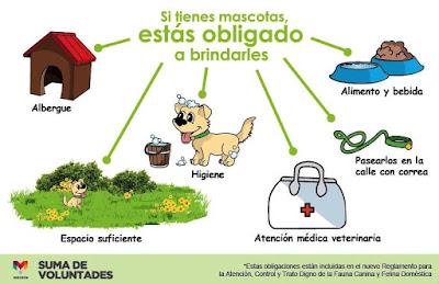 Obligaciones si tienes mascotas