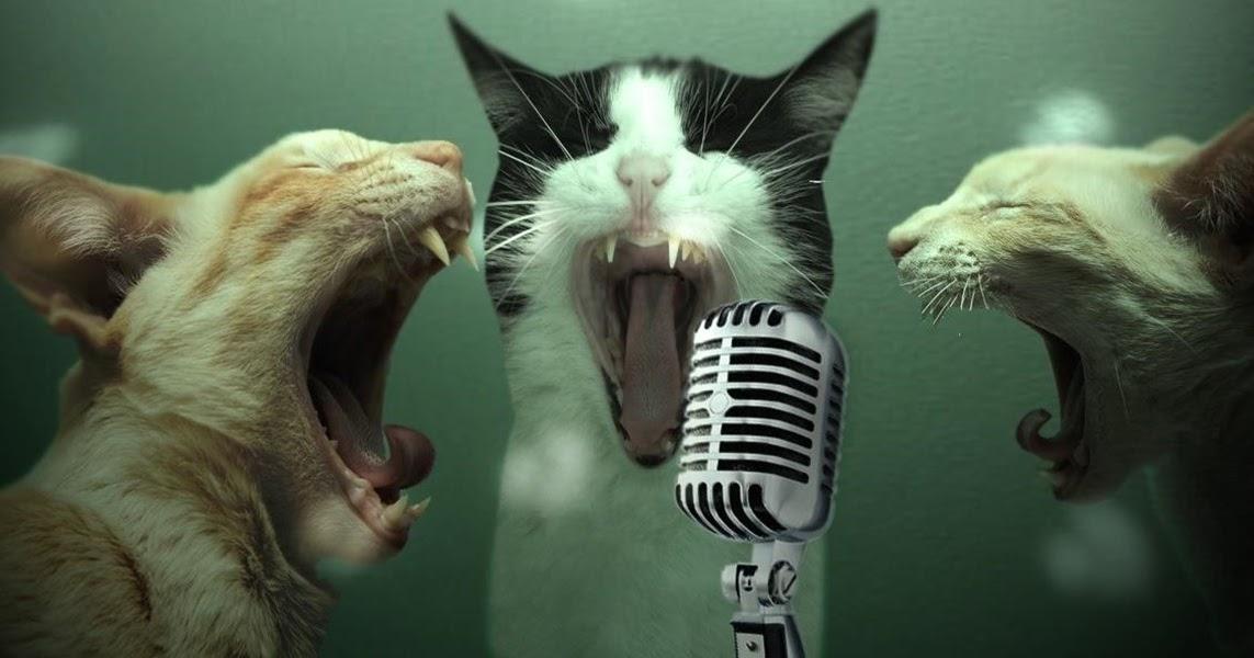 Микрофон смешные картинки, рисунки