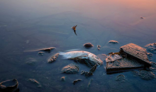 AS Pernah Membuang Ribuan Ton Senjata Kimia ke Laut