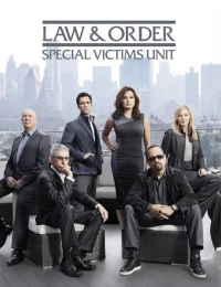 Law & Order: Special Victims Unit 15 | Bmovies