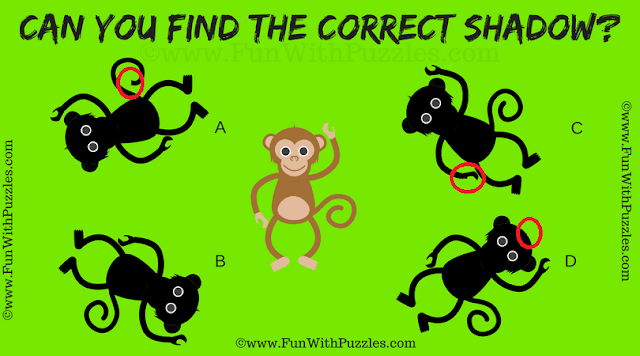 Answer of Shadow Picture Riddle for Kids
