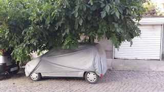 Yambol, Car, Hibernating, Summer,