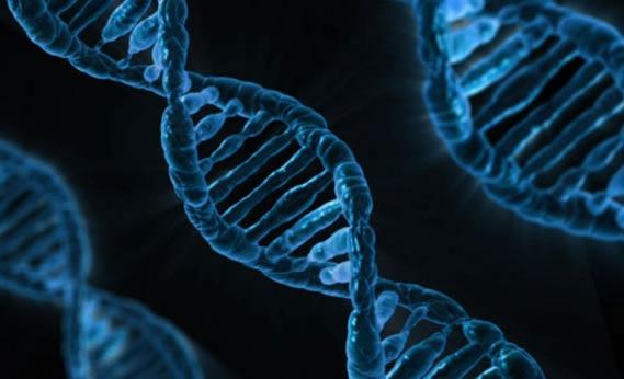 Post-Mendelian genetics