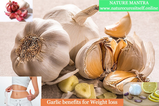 Garlic benefits for weight loss in hindi : वजन कम करने के लिए लहसुन का उपयोग ,lahsun se weight loss kaise kare, lahsun se weight loss in hindi
