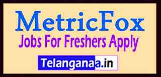 MetricFox Recruitment  Jobs For Freshers Apply