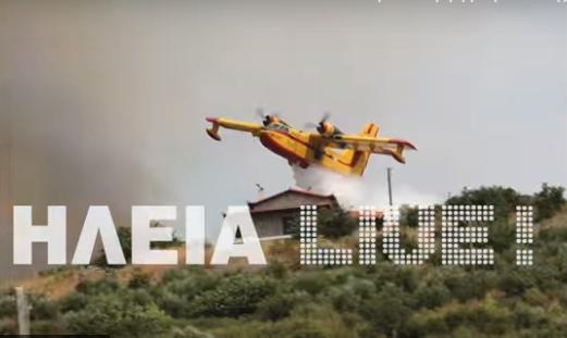 """Απίστευτη """"βουτιά"""" Έλληνα πιλότου Καναντέρ για να σώσει σπίτια στην Ηλεία (βίντεο)"""
