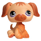 Littlest Pet Shop Singles Retriever (#286) Pet