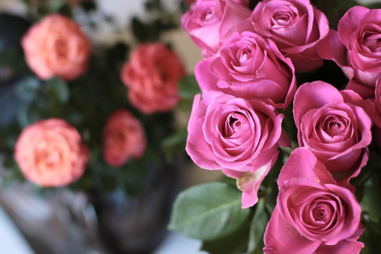 Miesiąc Maj W Zdjęciach - Morze, Róże i Pyszności