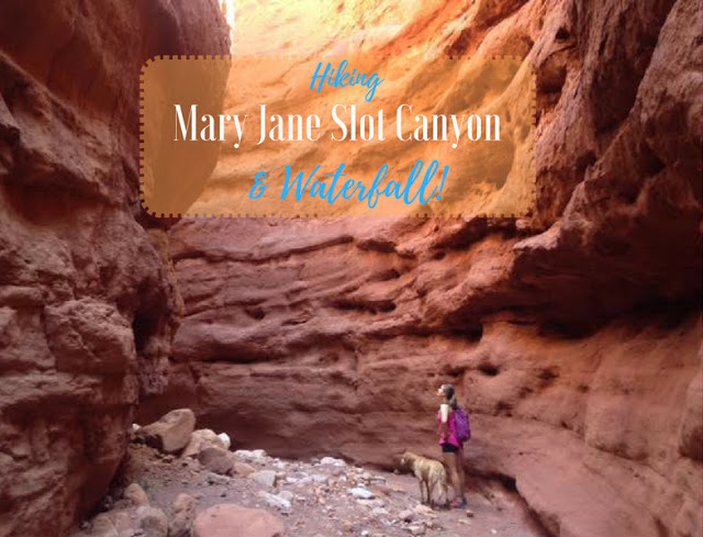 The Best Dog Friendly Waterfalls Hikes in Utah, Mary Jane Slot Canyon waterfall Moab