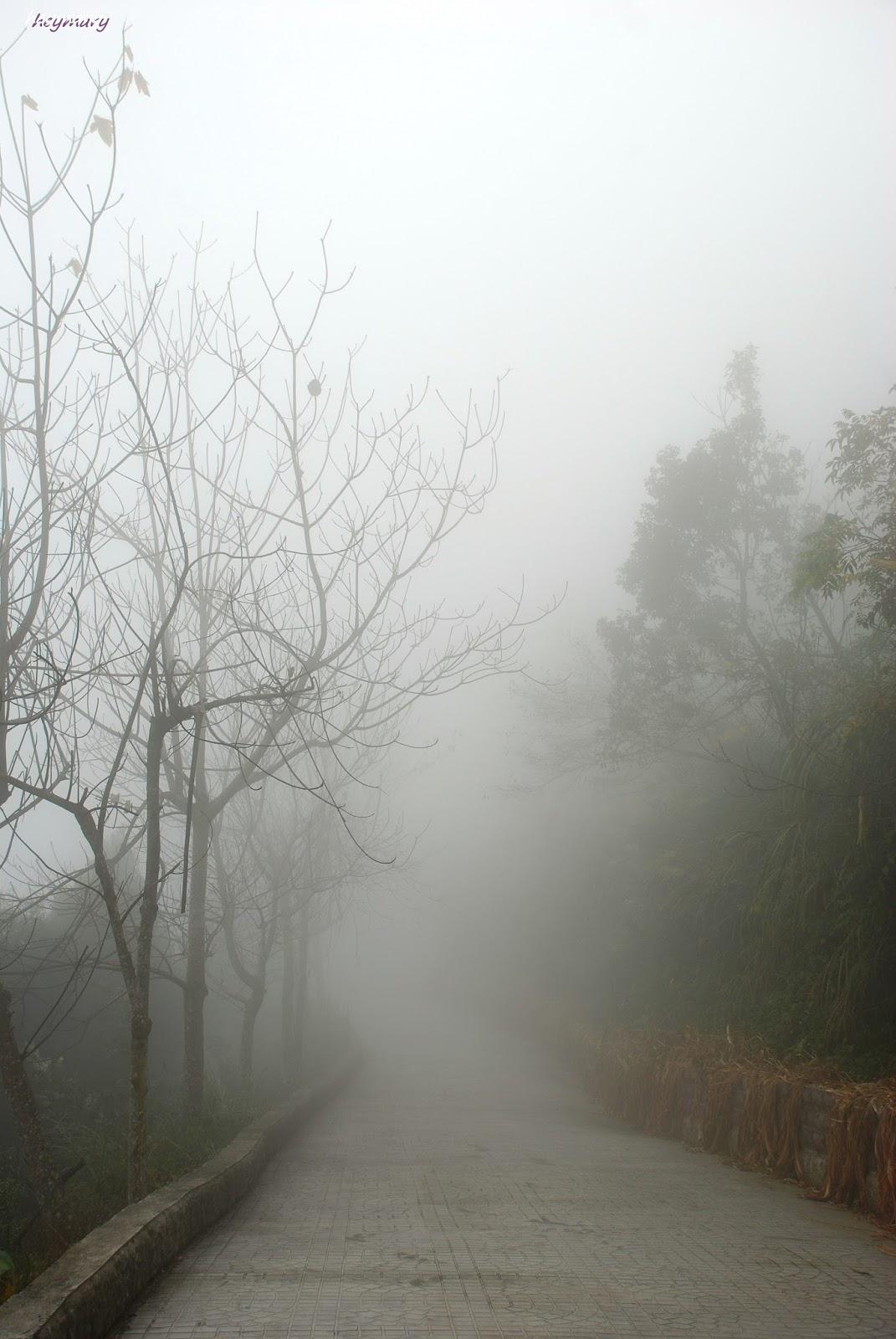 苗栗縣大湖鄉薑麻園