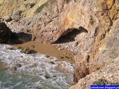 6 - Debaixo de uma pedra sai um Lagarto