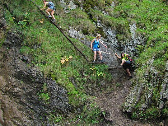 Stupaczki i drabina obok górnej strugi Wodospadu Welonowego.