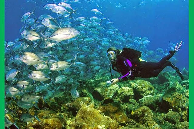 snorkeling pantai candidasa bali
