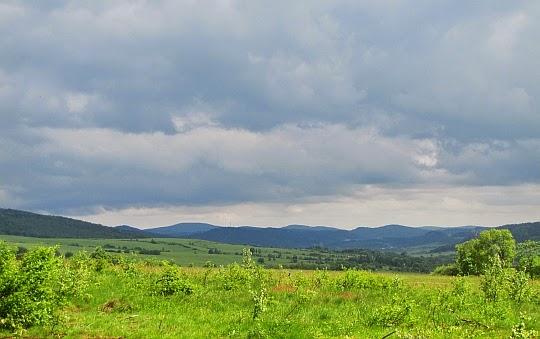 Widok w kierunku Jaśliskiego Parku Krajobrazowego.