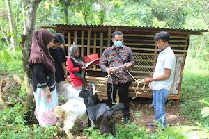 Penyerahan Bantuan Peningkatan Ekonomi Kemasyarakatan Berupa Bantuan Ternak Kambing