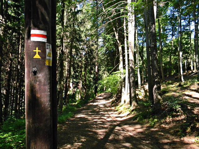Międzygórze, czerwony szlak, trasa, Jan Paweł II