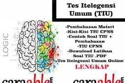 Belajar Tes Intelegensi Umum/ TIU CPNS + Contoh Soal dan Pembahasan PDF