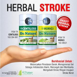 Obat Herbal Stroke Ringan, Obat Stroke Ringan, Obat Herbal Stroke