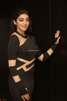 Pranitha Subhash in a skin tight backless brown gown at 64th Jio Filmfare Awards South ~  Exclusive 138.JPG