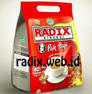 Radix Sinergi