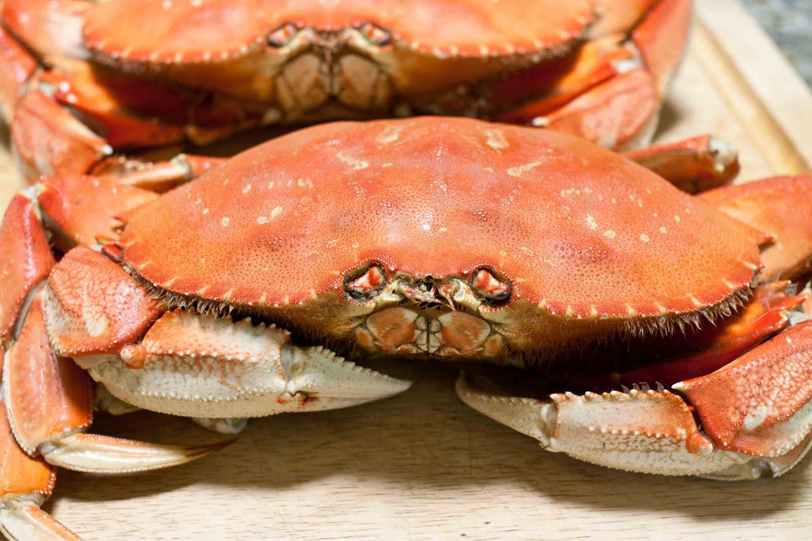 FOODjimoto: Dungeness Crab Appetizer Plate