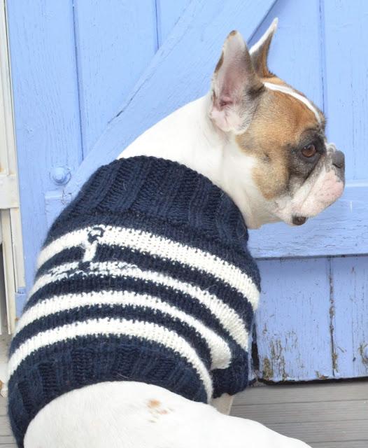 Marinière bouledogue francais tricotée main par C'est l'heure de la promenade