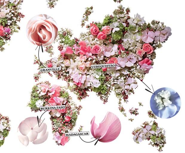Mapa flores jardim Dior