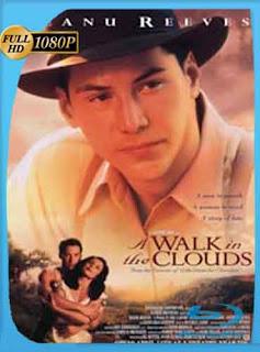 Un Paseo por las Nubes 1995 HD [1080p] Latino [GoogleDrive] DizonHD