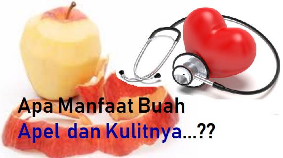 Manfaat Buah Apel dan Kulinya