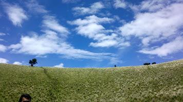 Mengatur gambar (resize/crop) yang diunggah melalui blogger