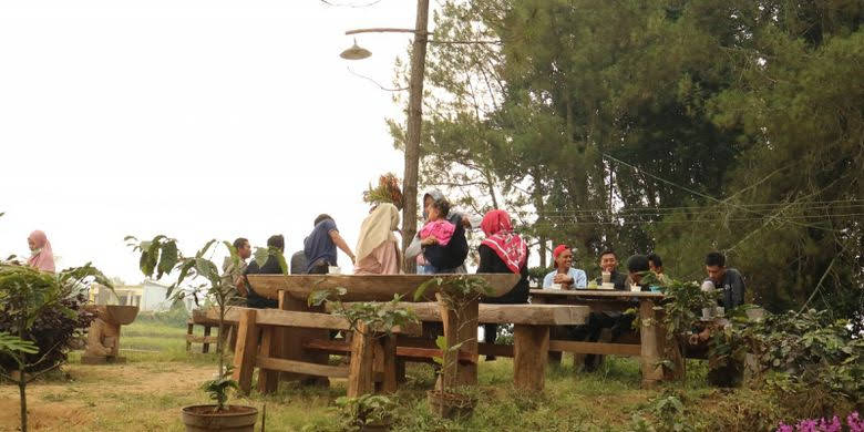 Sensasi Ngopi Yellow Carturra di Kedai Kopi Kaki Gunung Argopuro