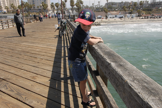 pier at oceanside harbor: LadyD Books
