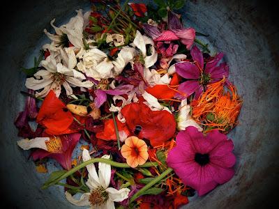 Pétalos de flores