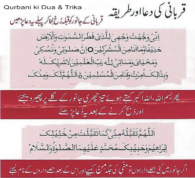 qurbani ki dua or tareeka