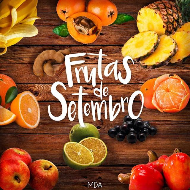 Resultado de imagem para frutas legumes e verduras de setembro