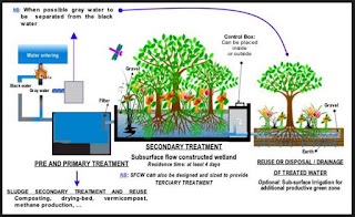 Temporal Variation and other Physico-Chemical Parameters of Untreated and Treated Water Quality of Sewage Treatment Plant (STP), Agra