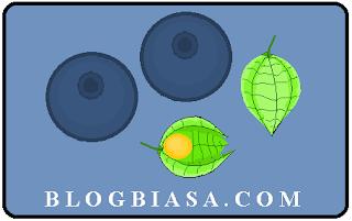 Aneka macam buah berry (beri) yang dapat ditemui di indonesia