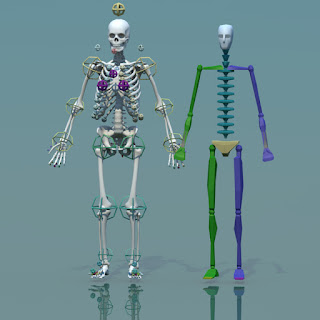 3d model human skeleton combine with biped