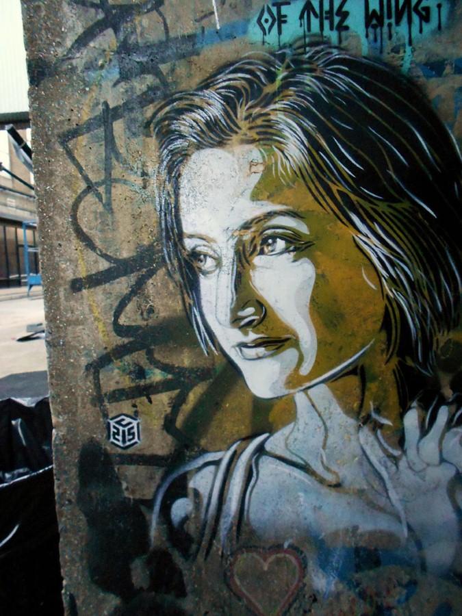 Уличное искусство Кристиана Гуеми (Christian Guémy aka C215) 17