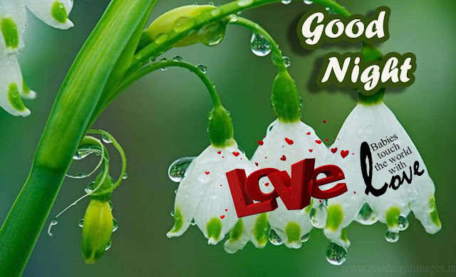 Good night wallpaper HD
