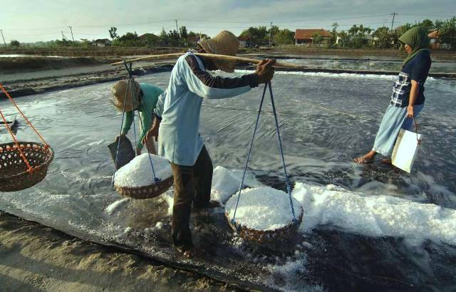 Antisipasi Kelangkaan, Pemkab Kembali Ajukan Impor Garam