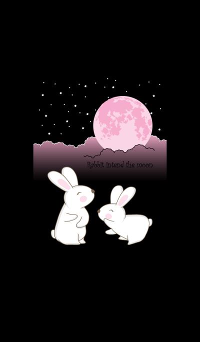 Rabbit intend the moon