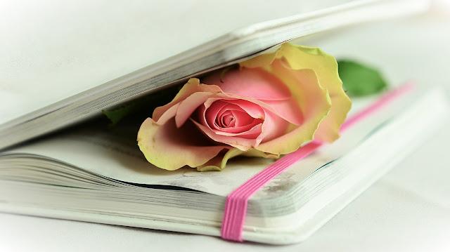 Libro San Valentín
