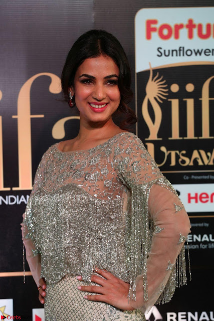 Sonal Chauhan in a stonework Floor Length Silver Designer Gown at IIFA Utsavam Awards March 2017 002.JPG