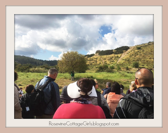 David and Goliath - The Valley of Elah where the Israelite army camped out when facing the Philistine army