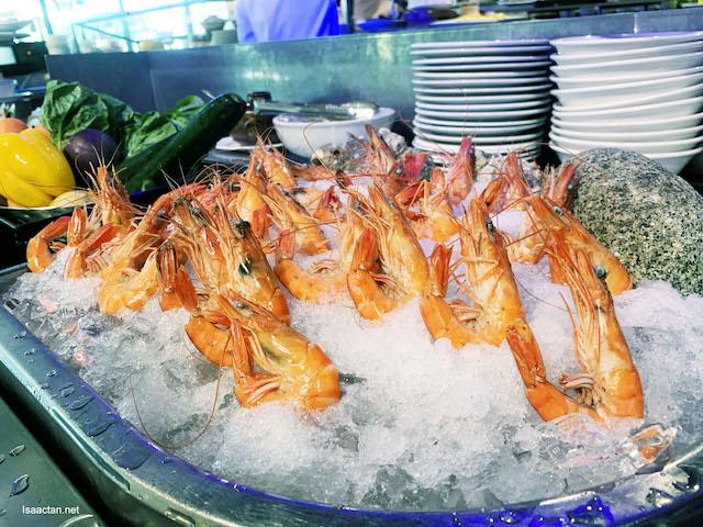 Seafood on ice - tiger prawns